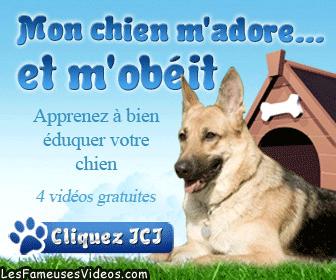 MON CHIEN M'ADORE... ET M'OBEIT